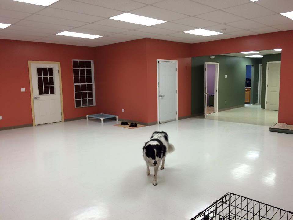 KK_facility
